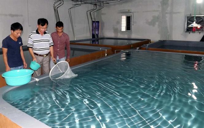 Sử dụng Test Sera Tiền Giang