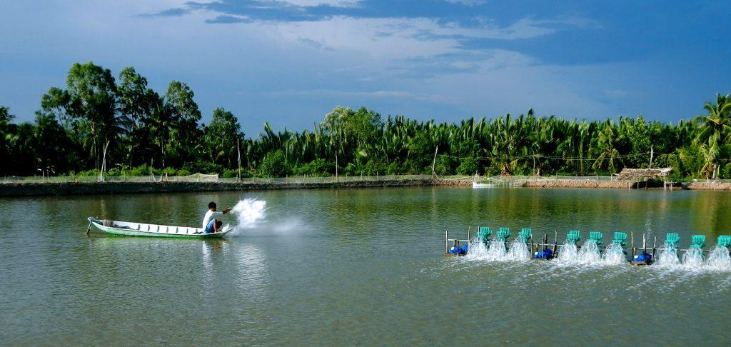Bán sỉ Test Sera Trà Vinh cùng bà con nông dân nuôi tôm siêu thâm canh